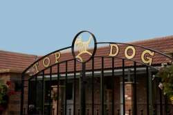 Top Dog Luxury Boarding Boarding Kennels Logo