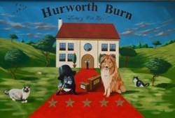 Hurworth Burn Luxury Pet Hotel Boarding Kennels in Wingate Durham