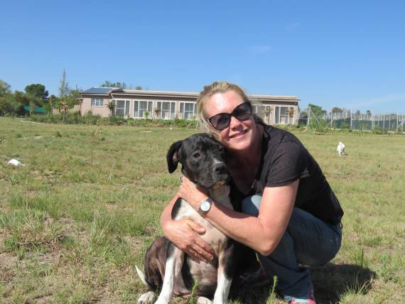 Skyview Kennels in Gauteng